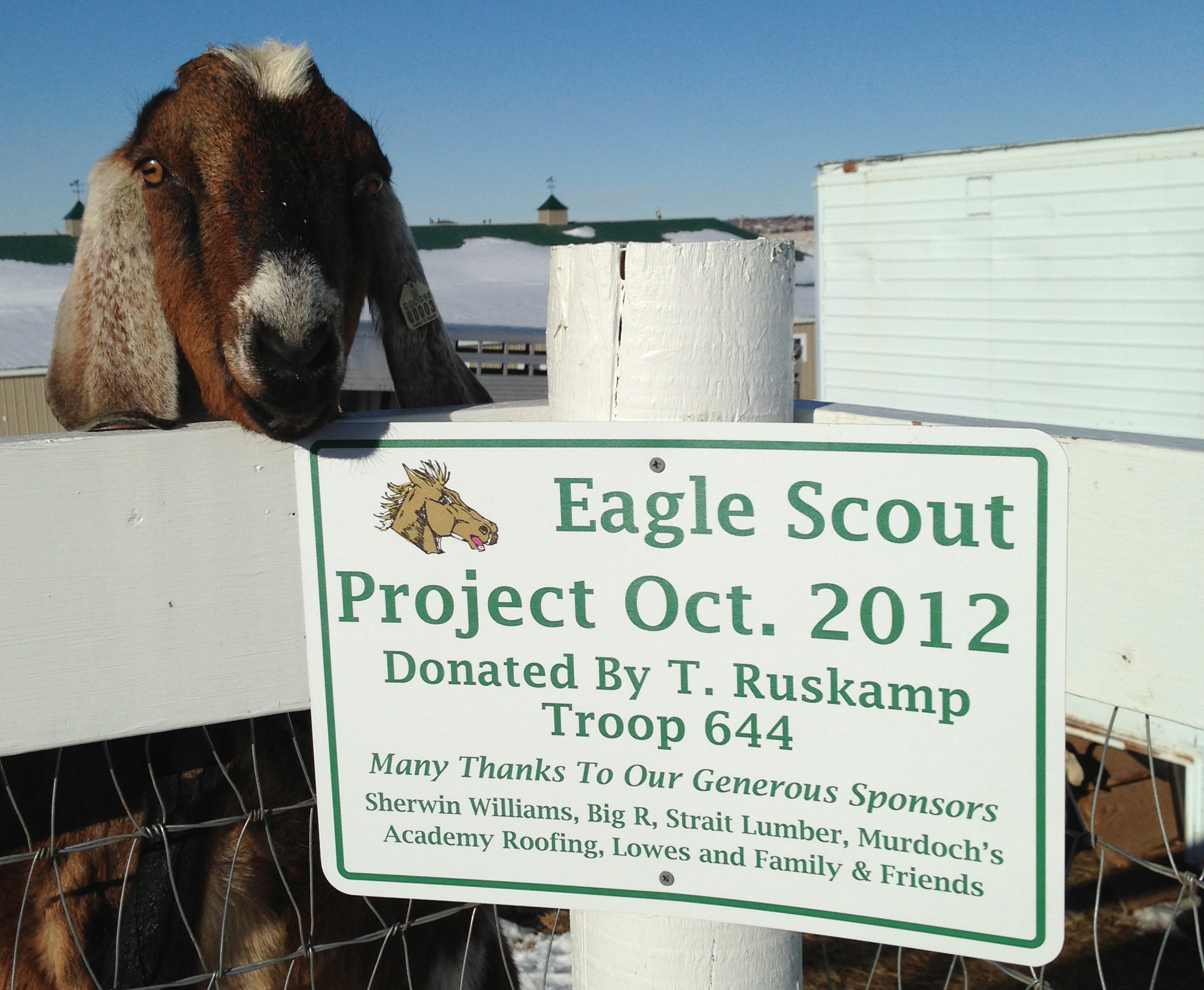 Eagle Scout Project